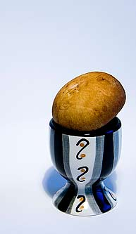Mushroom in Egg Cup