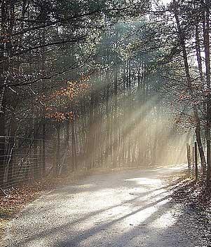 road in light
