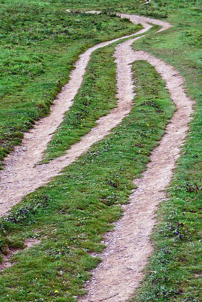 Path by Tim Green