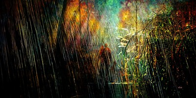 United in the bad weather of life by Claudia Dea