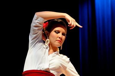 Flamenco by Leonardo Shinagawa