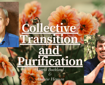 A Conversation with Andrew Hewson on the Collective Transition