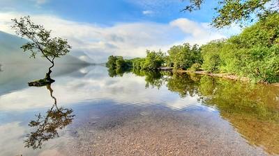 Lone tree of padarn lake by Hefin Owen