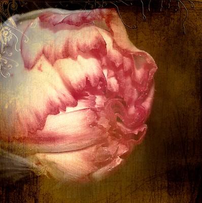 Love Me Tender by Delphine Devos
