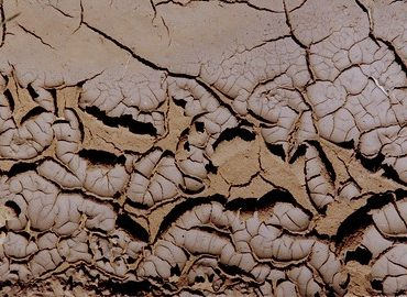 Handling Mud